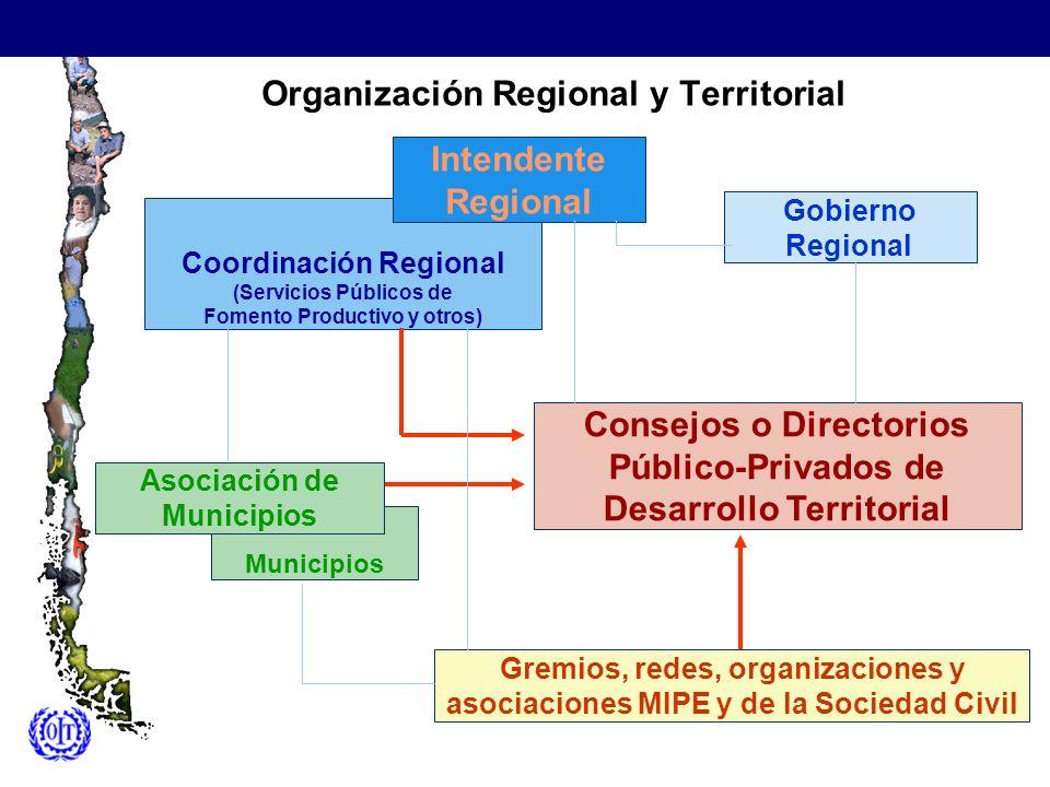 Organización Regional y Territorial