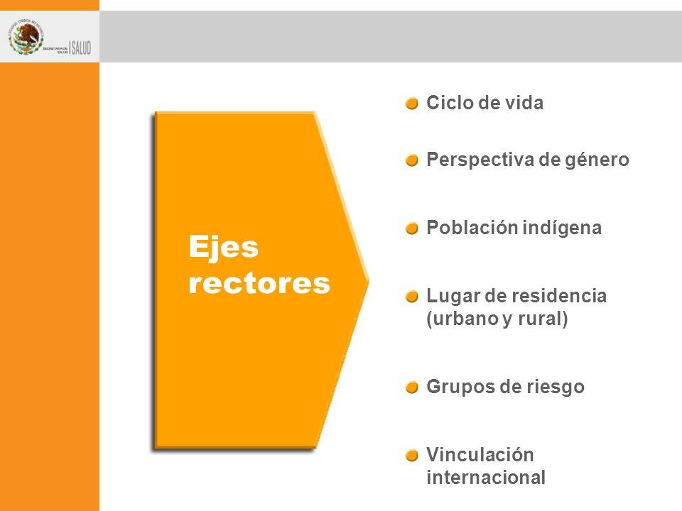 Ejes rectores Ciclo de vida Perspectiva de género Población indígena