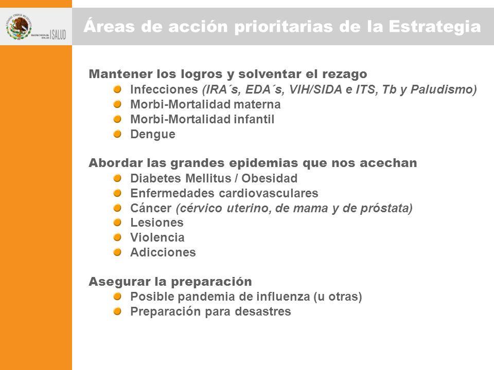 Áreas de acción prioritarias de la Estrategia