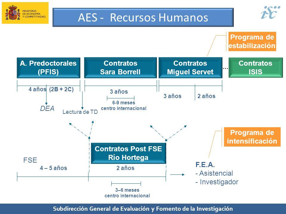 AES - Recursos Humanos Programa de estabilización A. Predoctorales