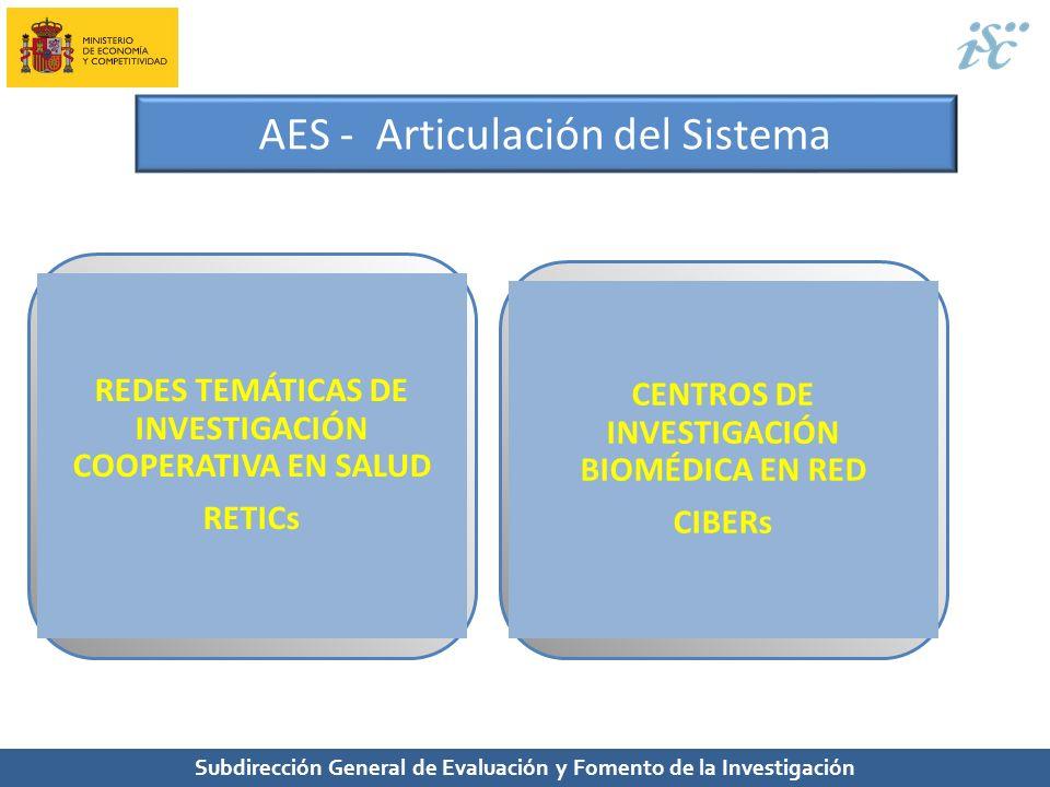 AES - Articulación del Sistema