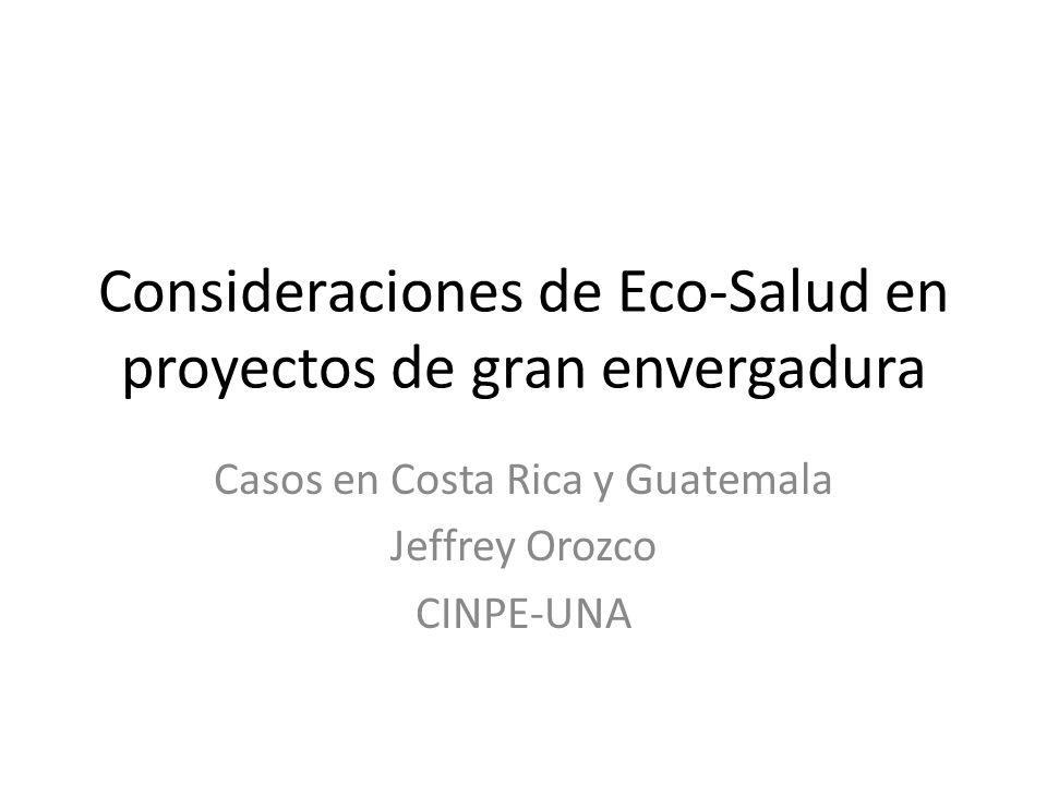 Consideraciones de Eco-Salud en proyectos de gran envergadura