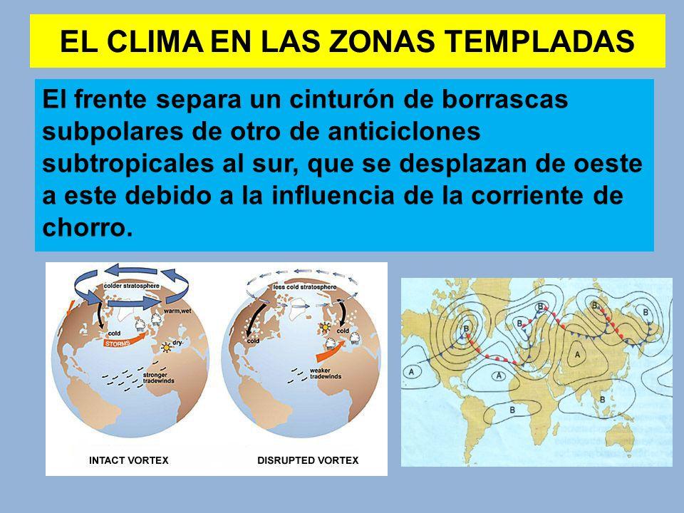 EL CLIMA EN LAS ZONAS TEMPLADAS