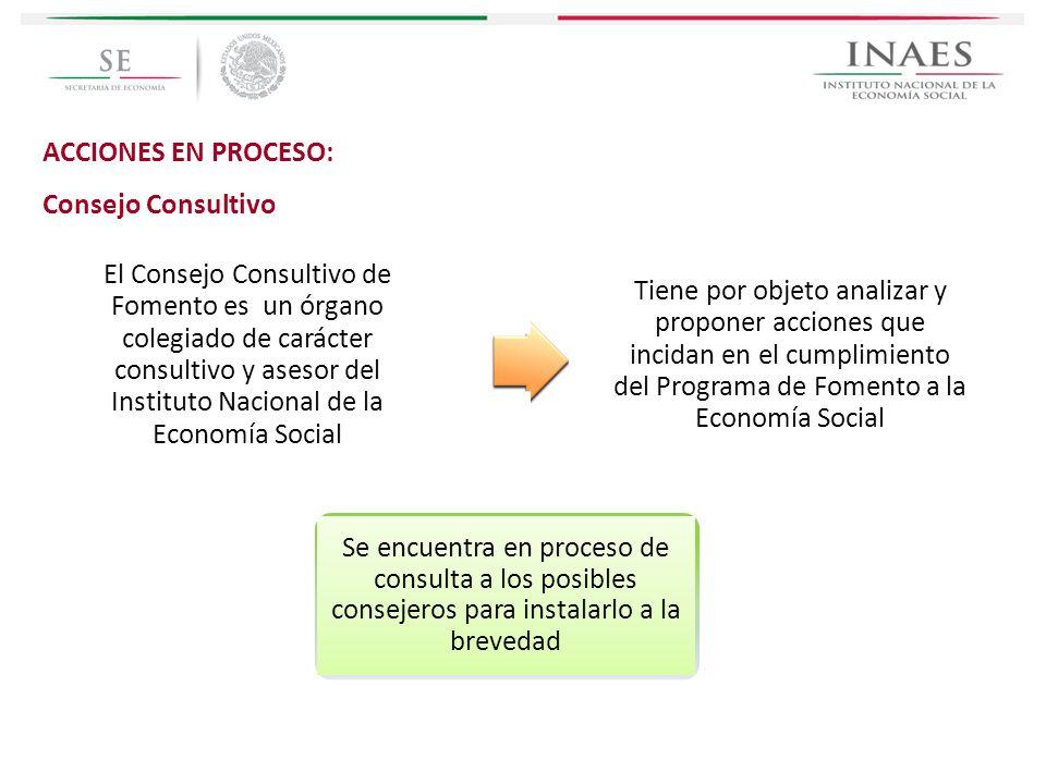 ACCIONES EN PROCESO: Consejo Consultivo.
