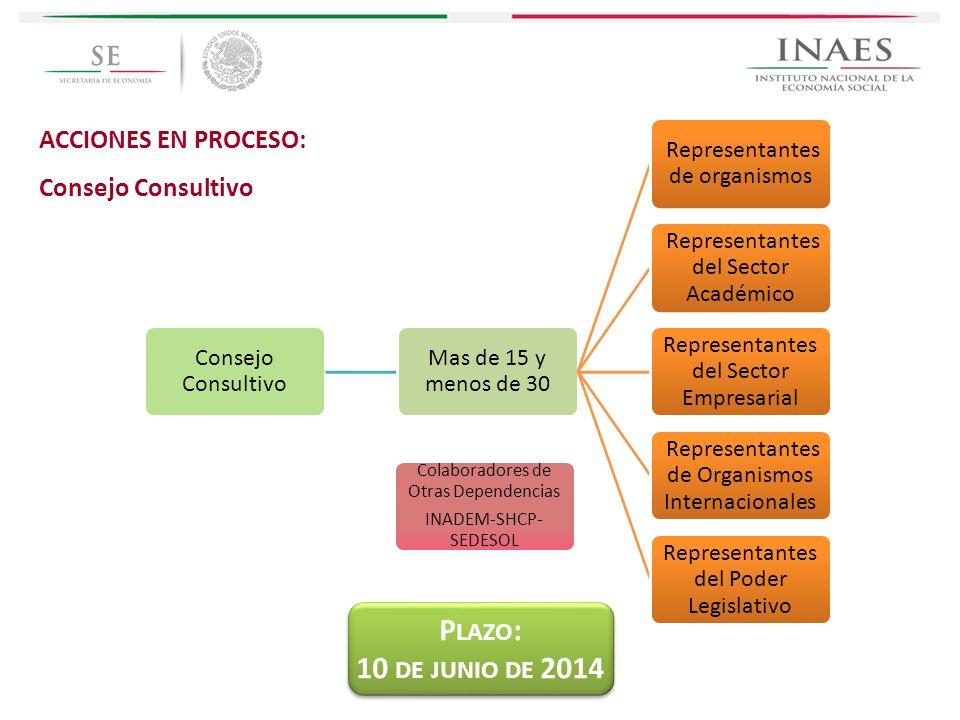 Plazo: 10 de junio de 2014 ACCIONES EN PROCESO: Consejo Consultivo
