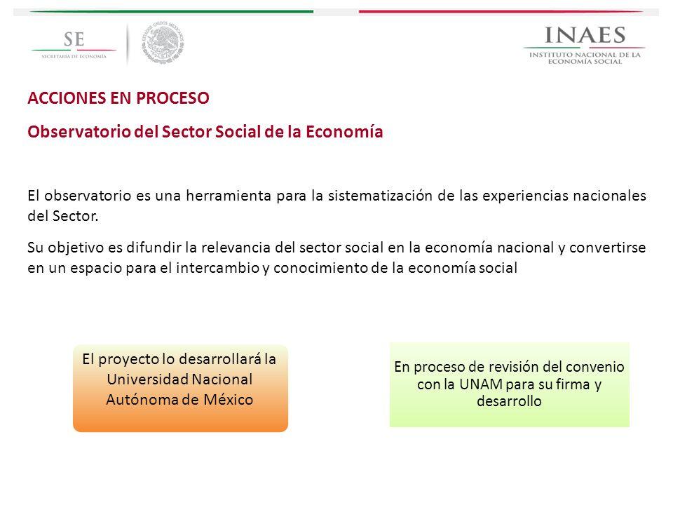 El proyecto lo desarrollará la Universidad Nacional Autónoma de México