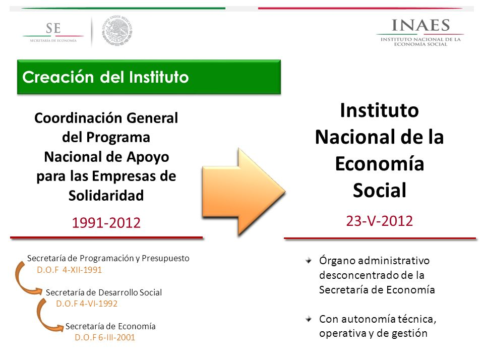 Creación del Instituto