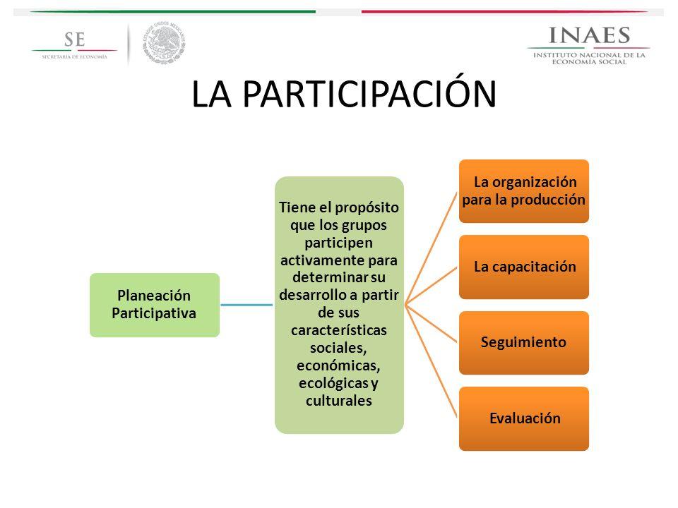 LA PARTICIPACIÓN Planeación Participativa