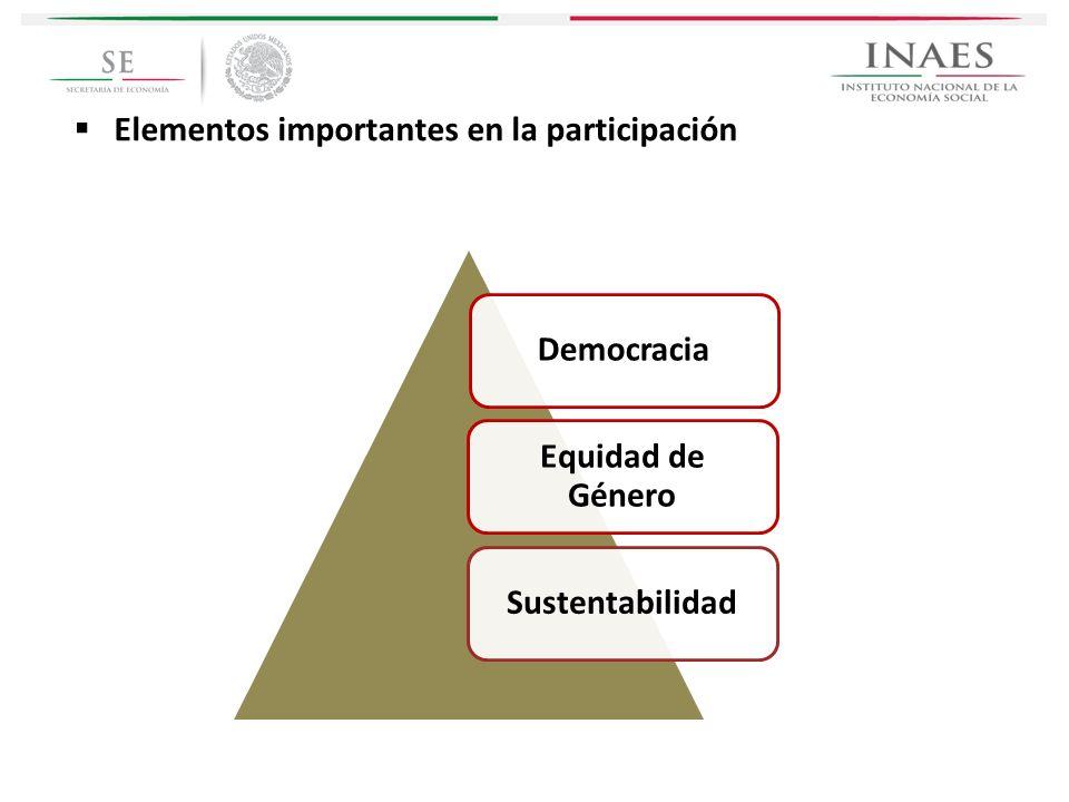 Elementos importantes en la participación