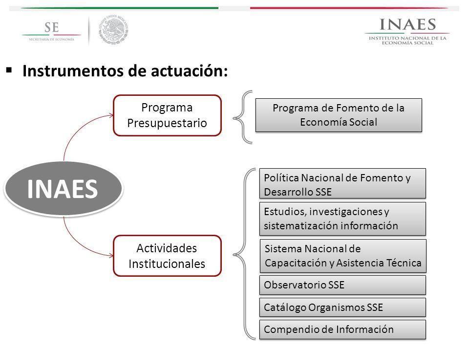 INAES Instrumentos de actuación: Programa Presupuestario
