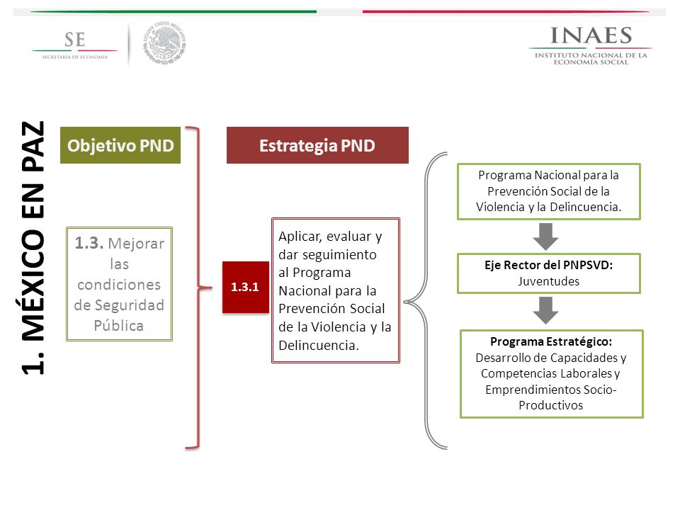Programa Estratégico: