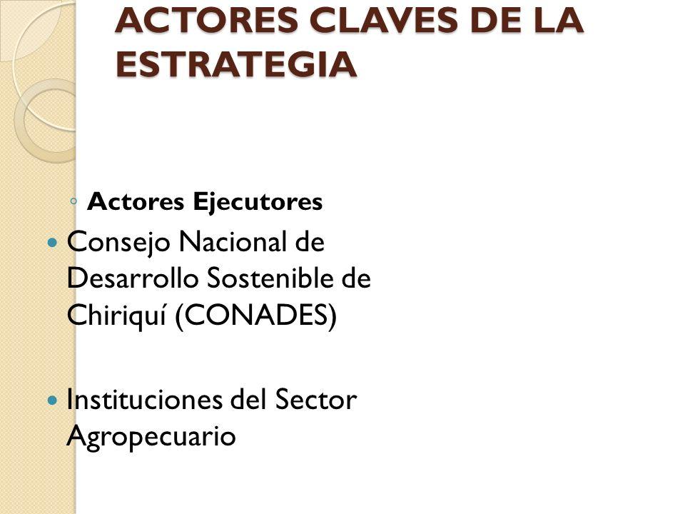 ACTORES CLAVES DE LA ESTRATEGIA