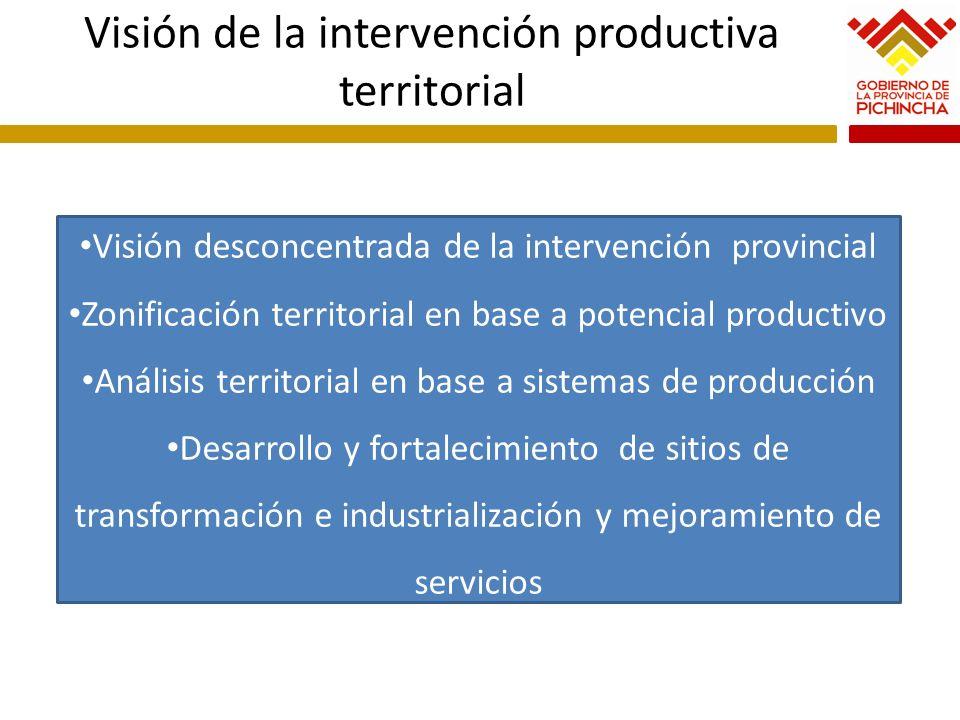 Visión de la intervención productiva territorial