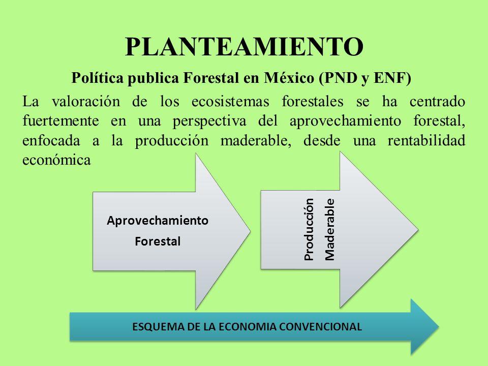 ESQUEMA DE LA ECONOMIA CONVENCIONAL