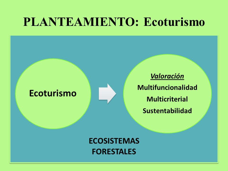 PLANTEAMIENTO: Ecoturismo