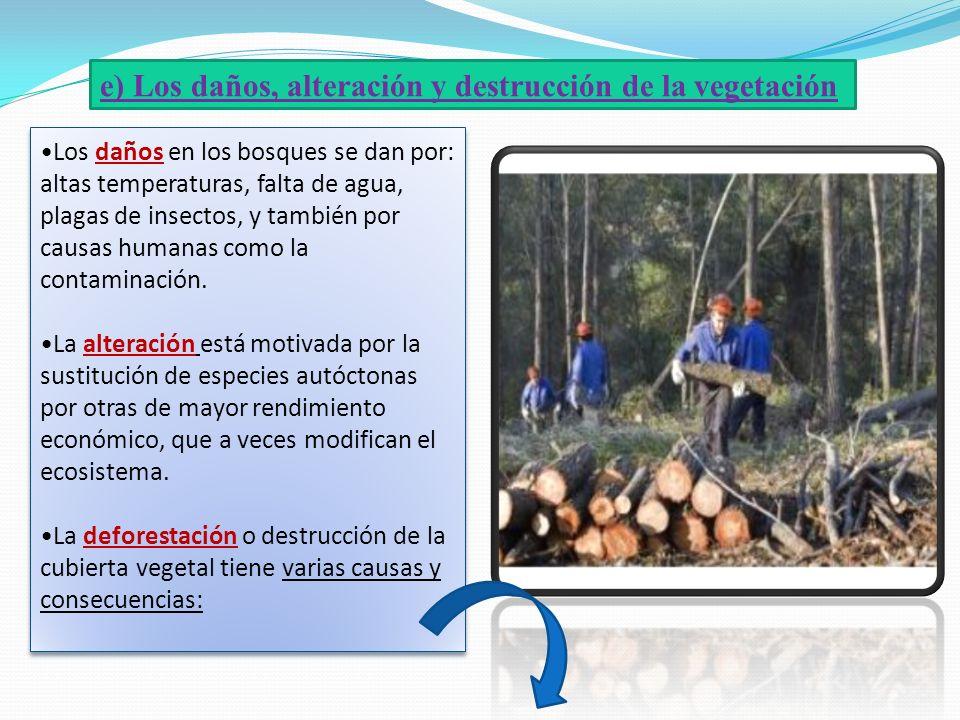 e) Los daños, alteración y destrucción de la vegetación