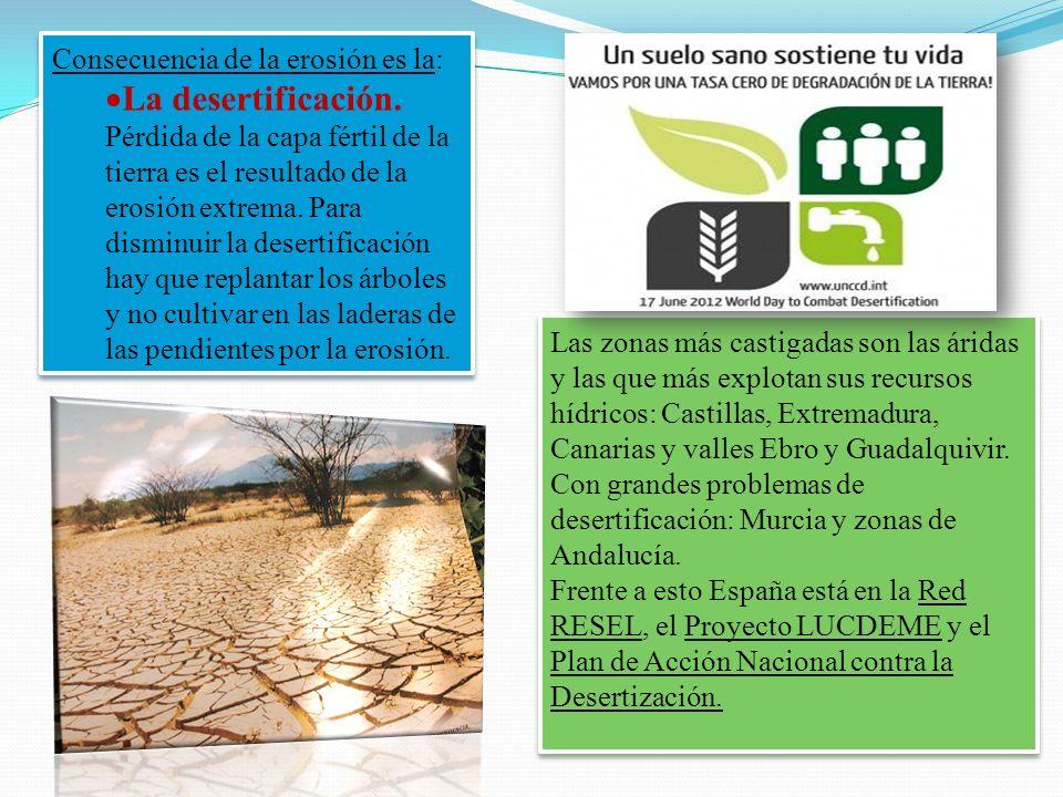 Consecuencia de la erosión es la: