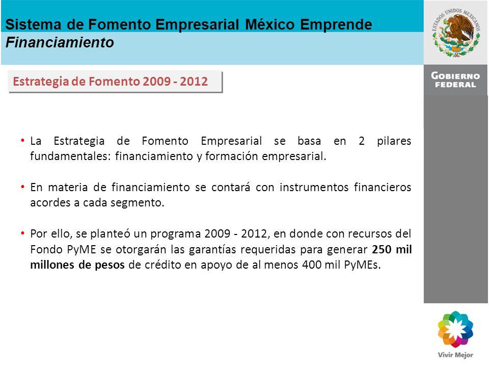 Sistema de Fomento Empresarial México Emprende Financiamiento