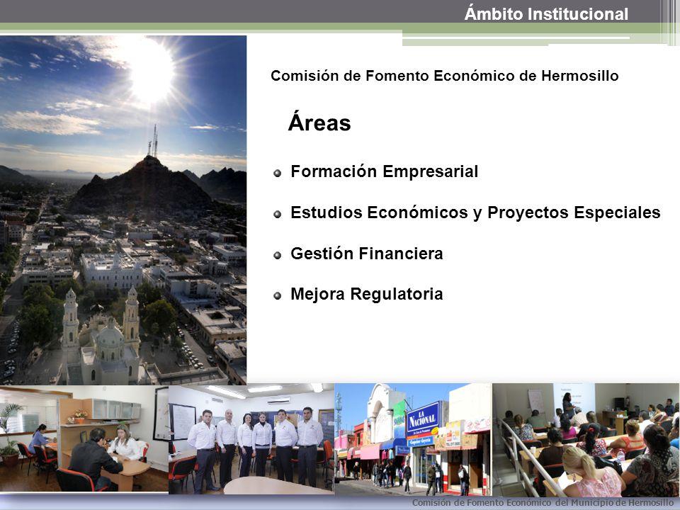 Áreas Ámbito Institucional Formación Empresarial