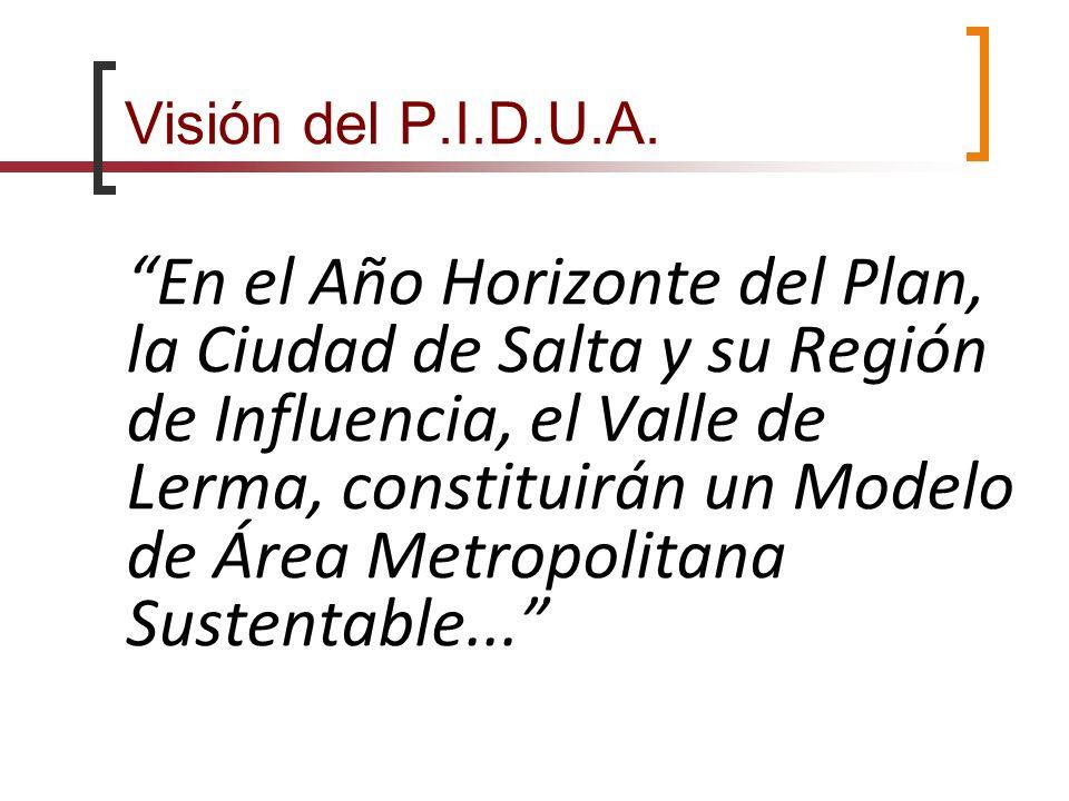 Visión del P.I.D.U.A.