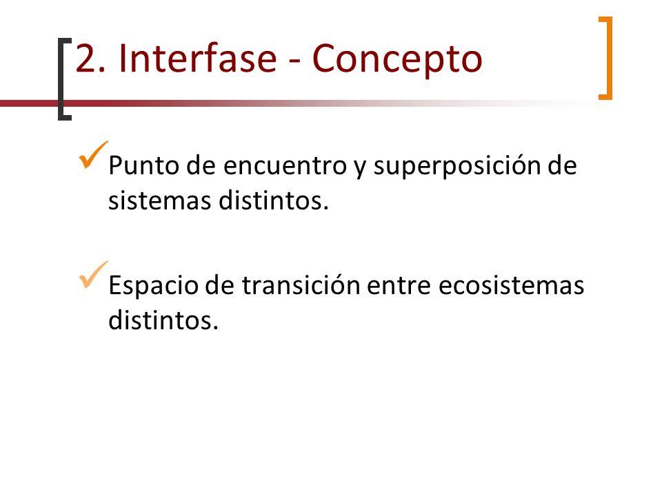 2. Interfase - Concepto Punto de encuentro y superposición de sistemas distintos.