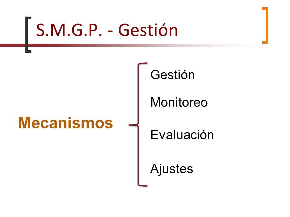 S.M.G.P. - Gestión Mecanismos Gestión Monitoreo Evaluación Ajustes