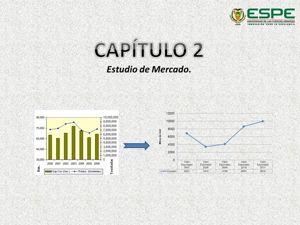 CAPÍTULO 2 Estudio de Mercado.