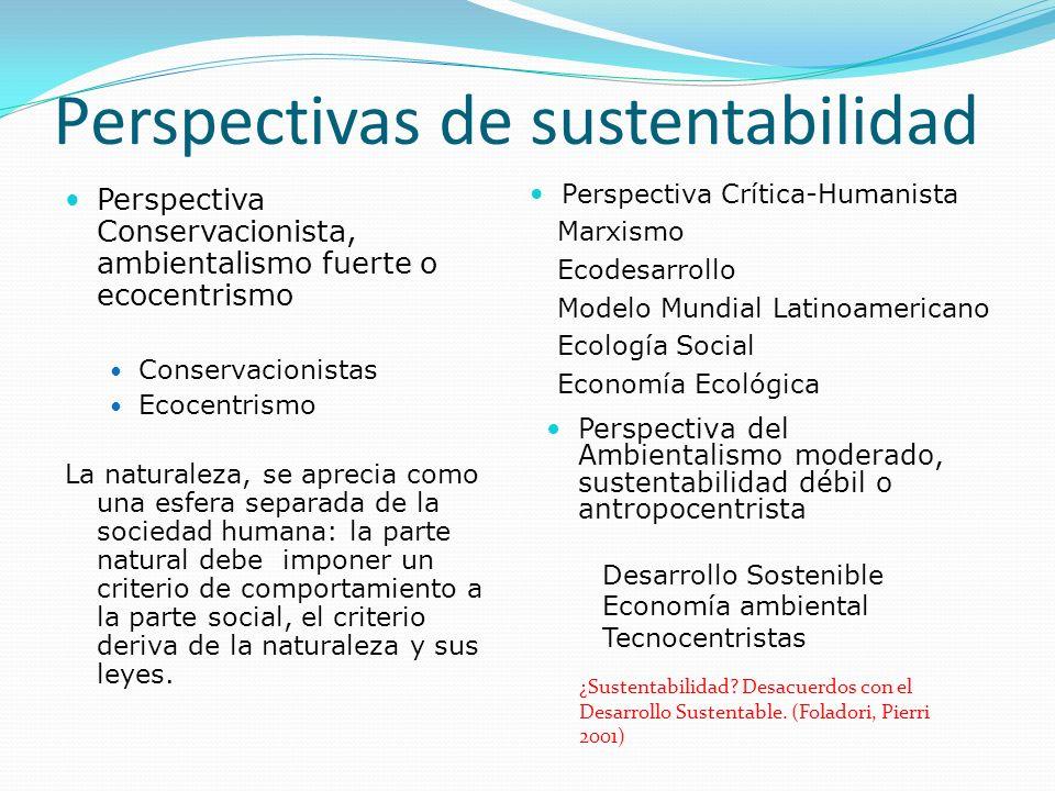 Perspectivas de sustentabilidad