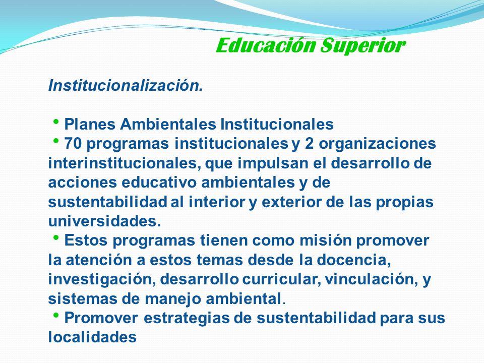 Educación Superior Institucionalización.