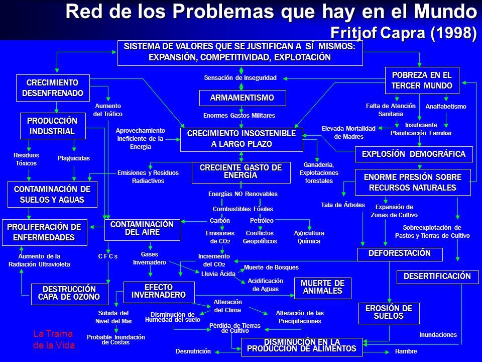 Red de los Problemas que hay en el Mundo