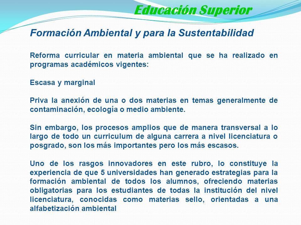 Educación Superior Formación Ambiental y para la Sustentabilidad