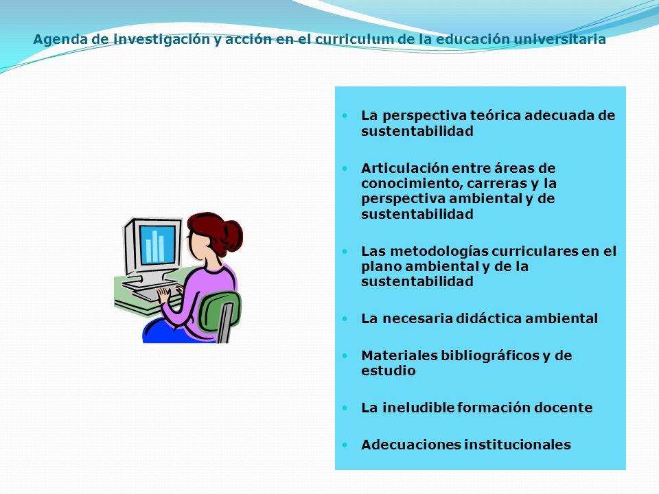 Agenda de investigación y acción en el curriculum de la educación universitaria