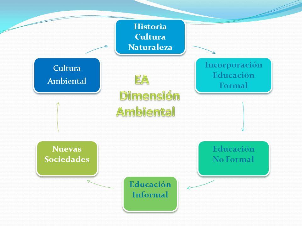 EA Dimensión Ambiental