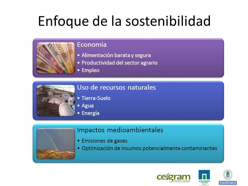 Enfoque de la sostenibilidad
