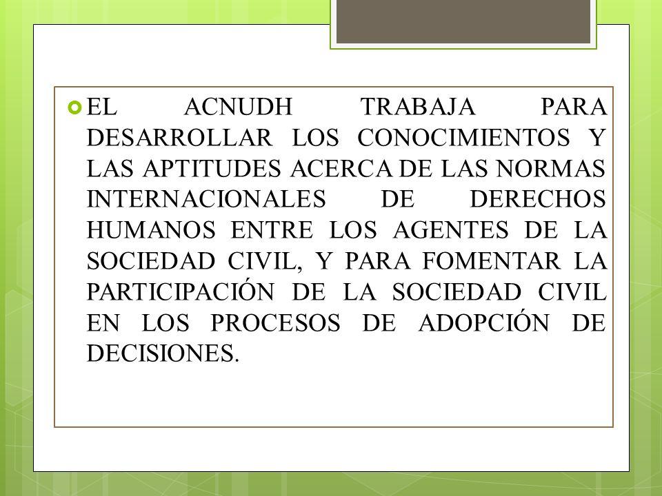 EL ACNUDH TRABAJA PARA DESARROLLAR LOS CONOCIMIENTOS Y LAS APTITUDES ACERCA DE LAS NORMAS INTERNACIONALES DE DERECHOS HUMANOS ENTRE LOS AGENTES DE LA SOCIEDAD CIVIL, Y PARA FOMENTAR LA PARTICIPACIÓN DE LA SOCIEDAD CIVIL EN LOS PROCESOS DE ADOPCIÓN DE DECISIONES.