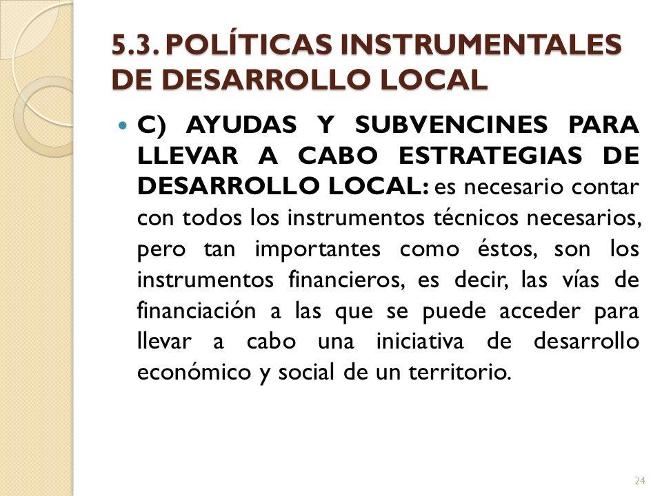 5.3. POLÍTICAS INSTRUMENTALES DE DESARROLLO LOCAL