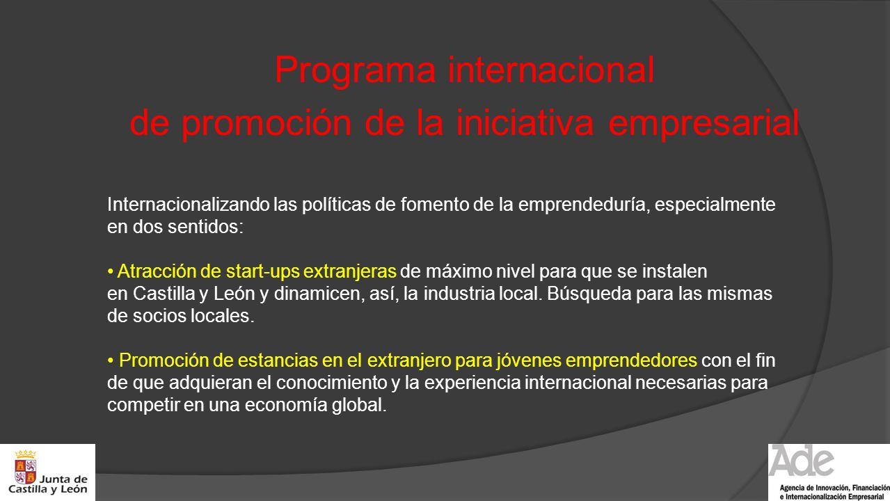 Programa internacional de promoción de la iniciativa empresarial
