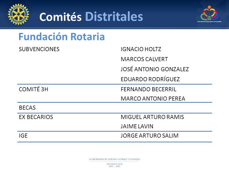 Comités Distritales Fundación Rotaria SUBVENCIONES IGNACIO HOLTZ