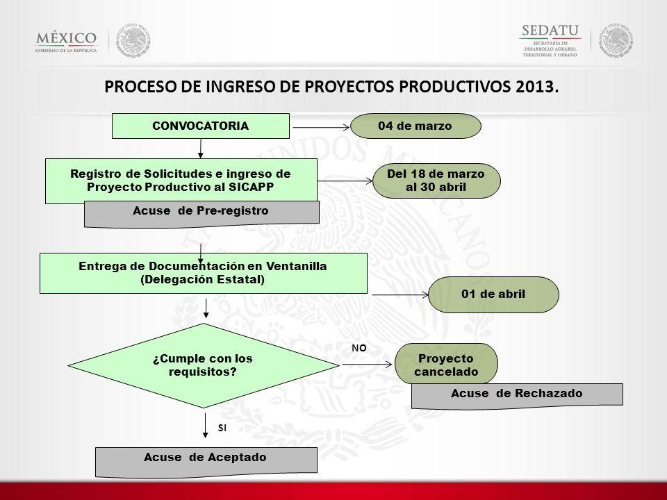 PROCESO DE INGRESO DE PROYECTOS PRODUCTIVOS 2013.
