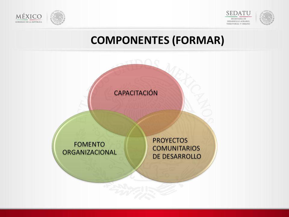 COMPONENTES (FORMAR)