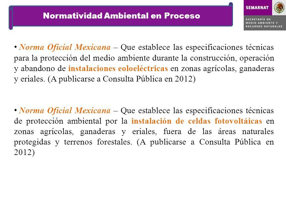 Normatividad Ambiental en Proceso