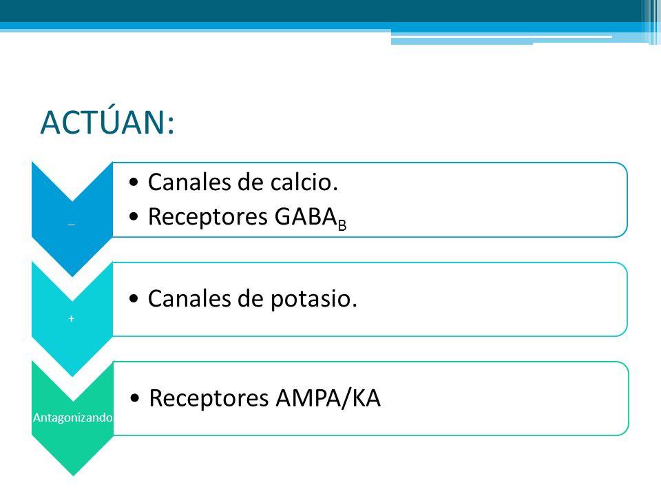 ACTÚAN: _ Canales de calcio. Receptores GABAB + Canales de potasio.