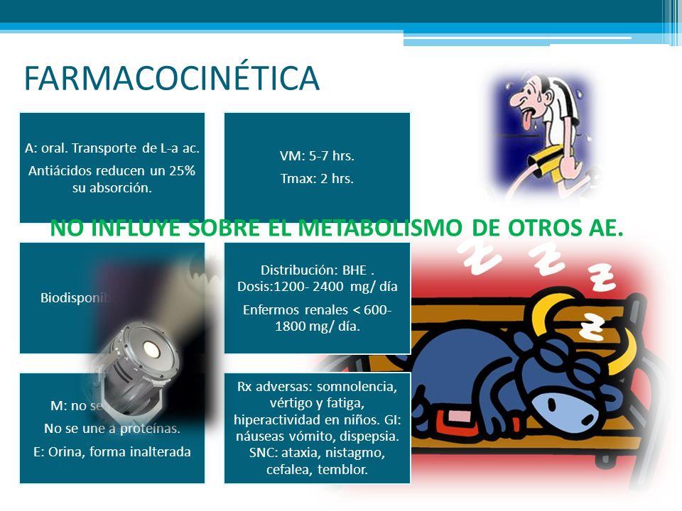 FARMACOCINÉTICA NO INFLUYE SOBRE EL METABOLISMO DE OTROS AE.