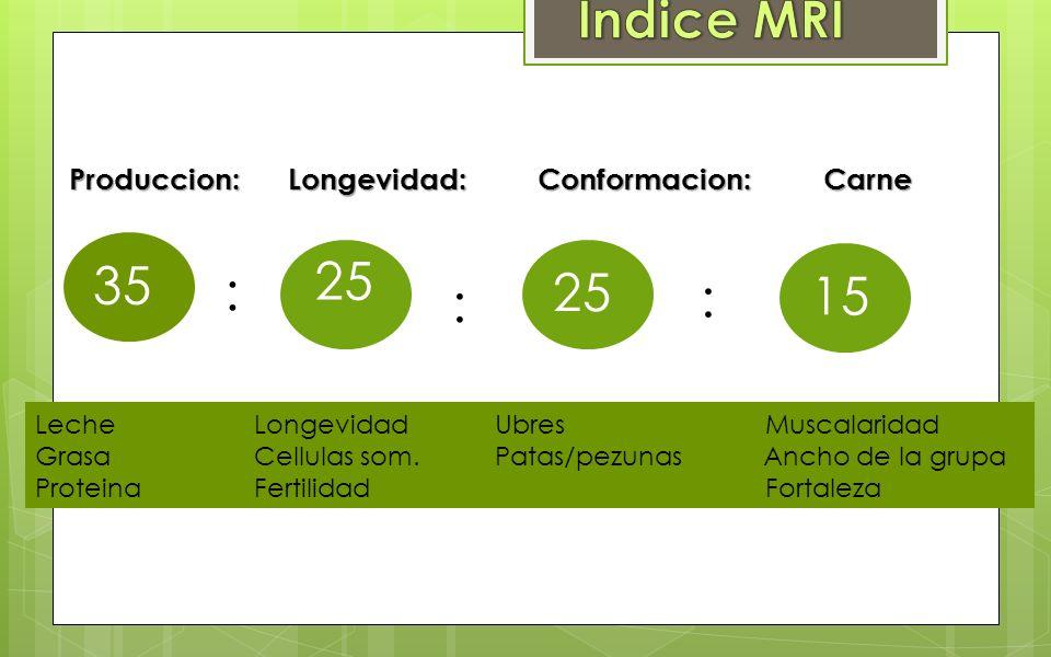 Indice MRI 25 35 15 : Produccion: Longevidad: Conformacion: Carne