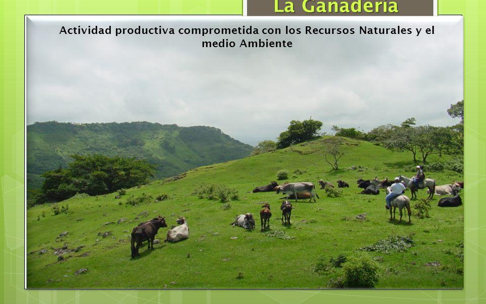 La Ganadería Actividad productiva comprometida con los Recursos Naturales y el medio Ambiente