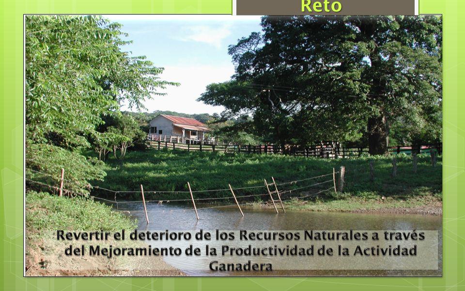 Reto Revertir el deterioro de los Recursos Naturales a través del Mejoramiento de la Productividad de la Actividad Ganadera.
