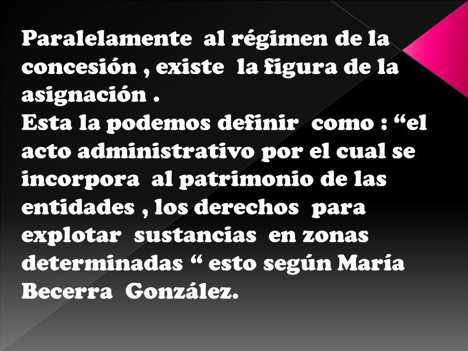 Paralelamente al régimen de la concesión , existe la figura de la asignación .
