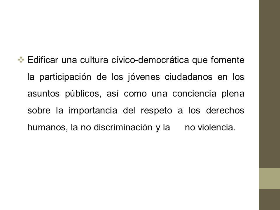 Edificar una cultura cívico-democrática que fomente la participación de los jóvenes ciudadanos en los asuntos públicos, así como una conciencia plena sobre la importancia del respeto a los derechos humanos, la no discriminación y la no violencia.