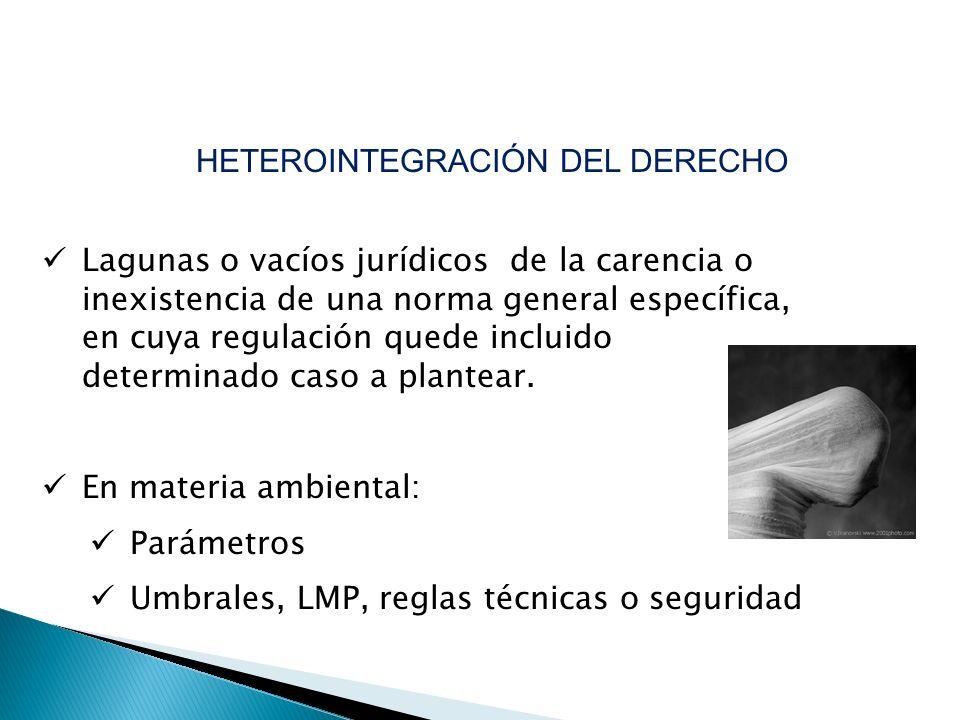 HETEROINTEGRACIÓN DEL DERECHO