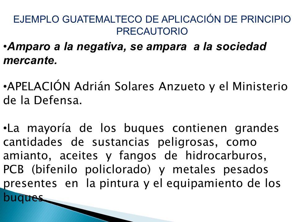 EJEMPLO GUATEMALTECO DE APLICACIÓN DE PRINCIPIO PRECAUTORIO